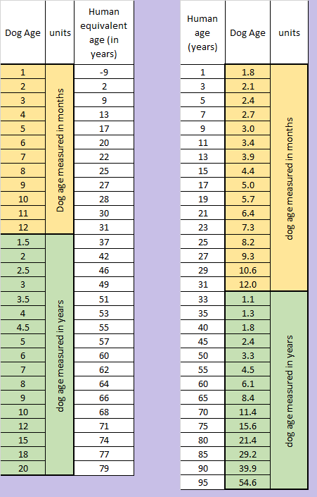 dog age table