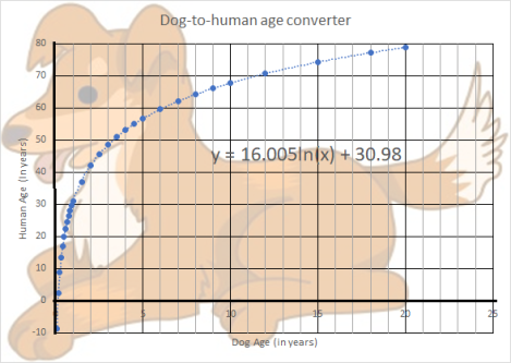 dog to human age converter graph